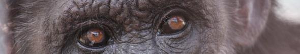 web_Jody_cropped_closeup_loot_toward_camera_face_GH_kh_IMG_2536
