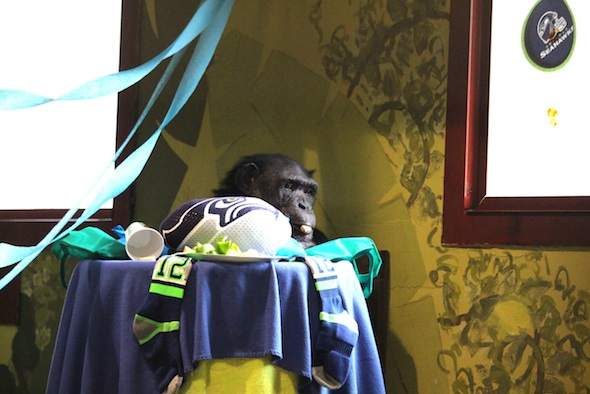web_Jamie_stand_behind_seattle_seahawks_SuperBowl_party_chow_in_mouth_12th_man_PR_kh_IMG_3591