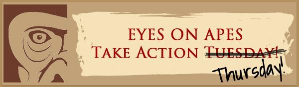 take-action-thursday