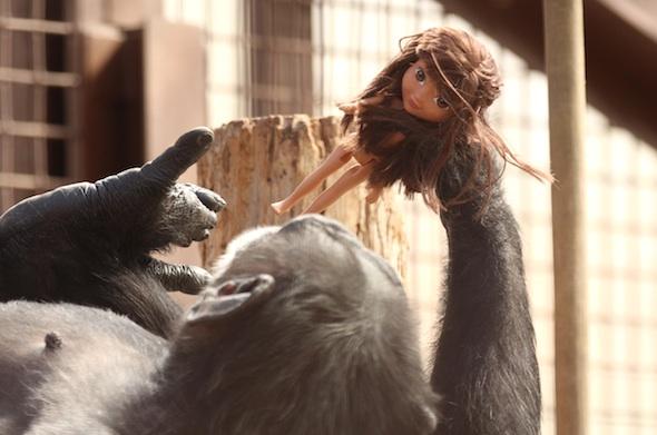 Foxie hold Dora
