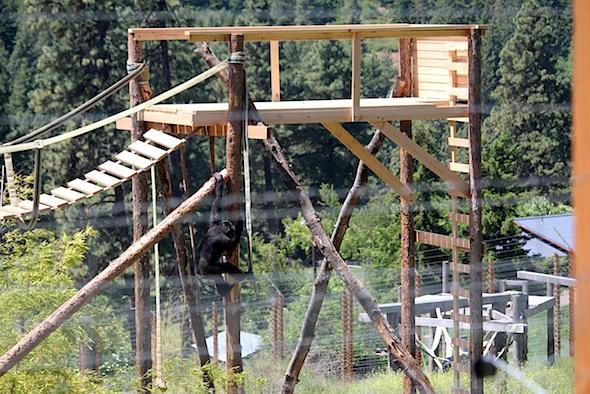 web_missy_climb_pole_to_tower_jb_IMG_3243