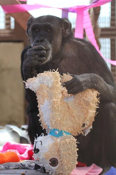 Jody with dog piñata