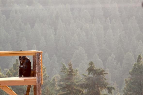 web_Jamie_look_out_at_mountains_jamies_tower_YH_jb_IMG_5340