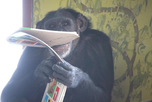 Jamie eating book