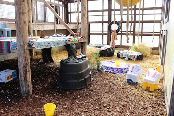 web_Easter_eggs_baskets_boxes_setup_GH_kh_IMG_0463