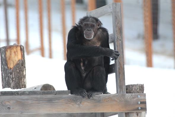 jamie sitting on structure