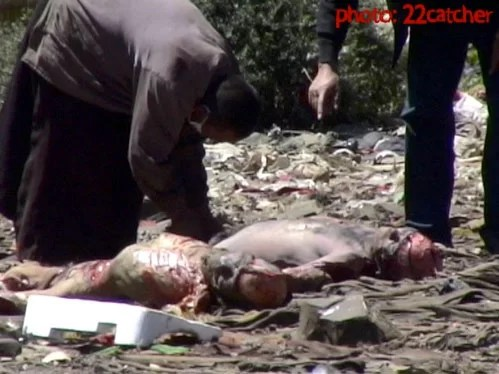 Tibetan Sky burial pictures