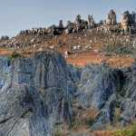 Wild Stone Forest in Yunnan