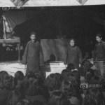 history-prostitution-china-030