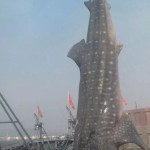 015-Whale-shark-Shangdong-2013