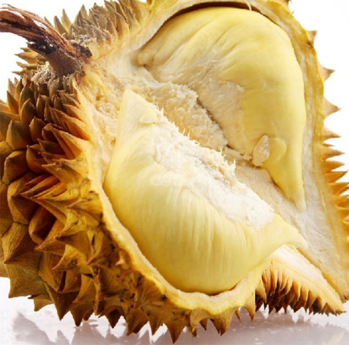 007durian-king-of-fruit