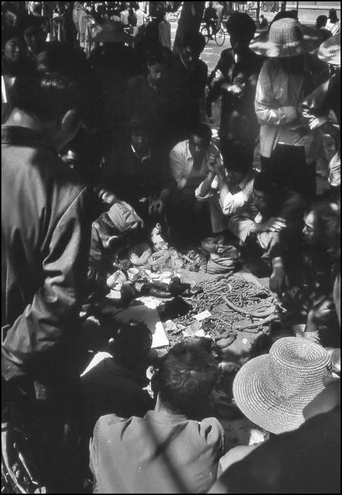 A seller of traditional Chinese medicine