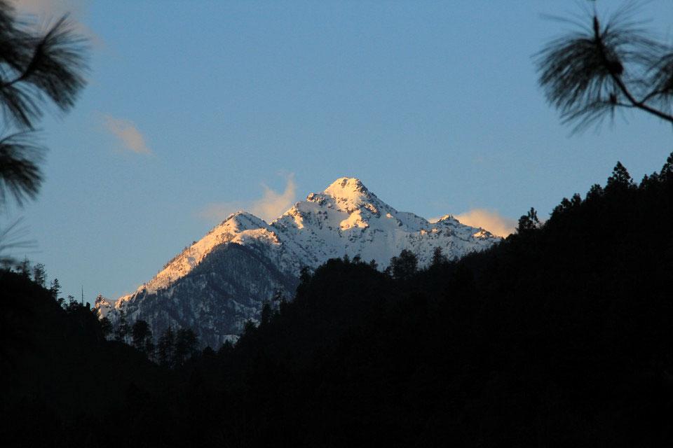 Mount Gaoligong Yunnan