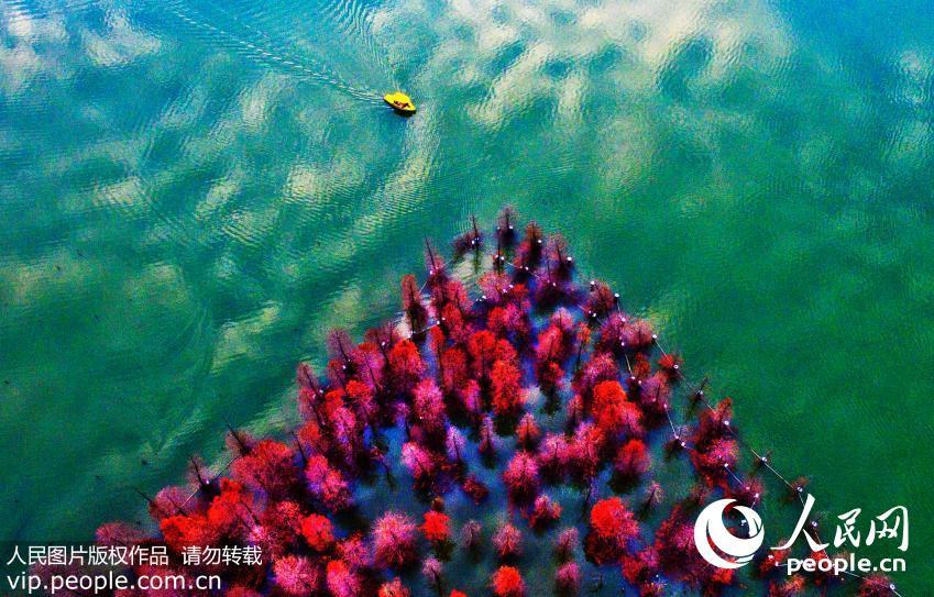 Zhenjiang-Jinshan-Lake