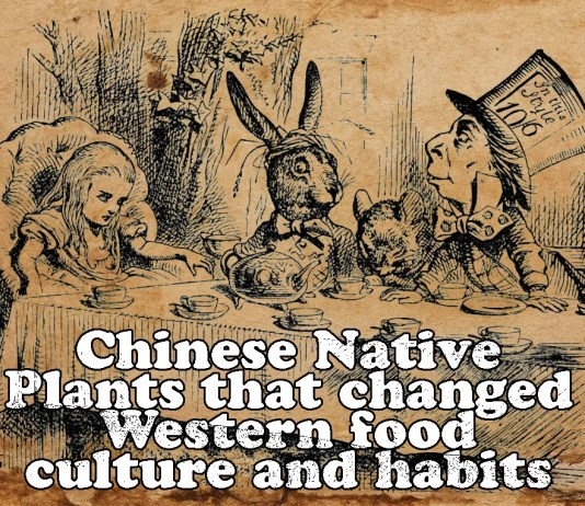 chinese-native-plants