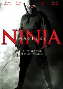 "Poster for the movie ""Ninja Masters"""