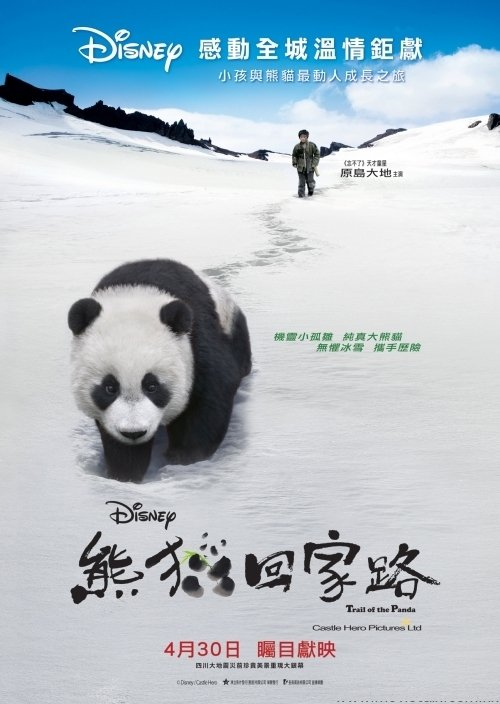"""Poster for the movie """"Trail of the Panda"""""""