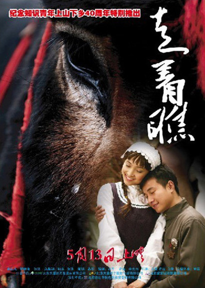 """Poster for the movie """"A Tale of Two Donkeys"""""""