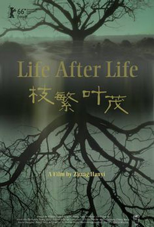 """Poster for the movie """"Life After Life"""""""