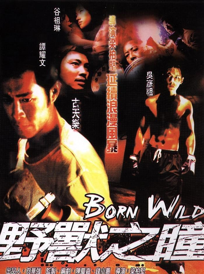 """Poster for the movie """"Born Wild"""""""