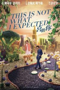 """Poster for the movie """"This Is Not What I Expected"""""""