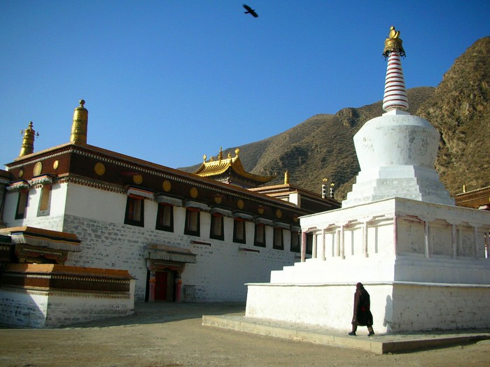 A lone pilgrim circumambulates one of Labrang's white stupas while a lone bird flies overhead.
