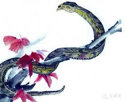 十二生肖羊年运程-蛇