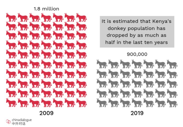 donkey numbers in Kenya have fallen by as much as half over the past ten years