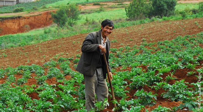 Likely winners and losers in rural land reform