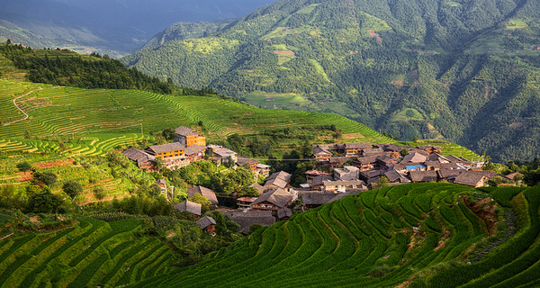 China's rural revitalisation strategy underwhelms