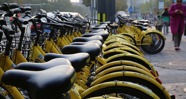 As bike rentals cool, ofo chooses to stand alone