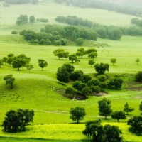 Top 5 Beautiful Grasslands of China