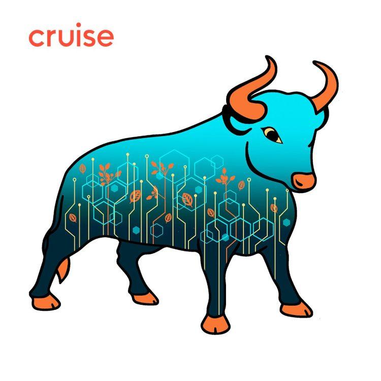 Cruise Modern Tech Bull2