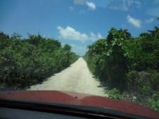 Road to Punta Herrero