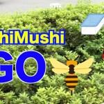 Mushi Mushi GO(ポケモンGOのパロディー)