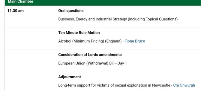 Parliamentary debate on the long term support for victims of sexual exploitation in Newcastle
