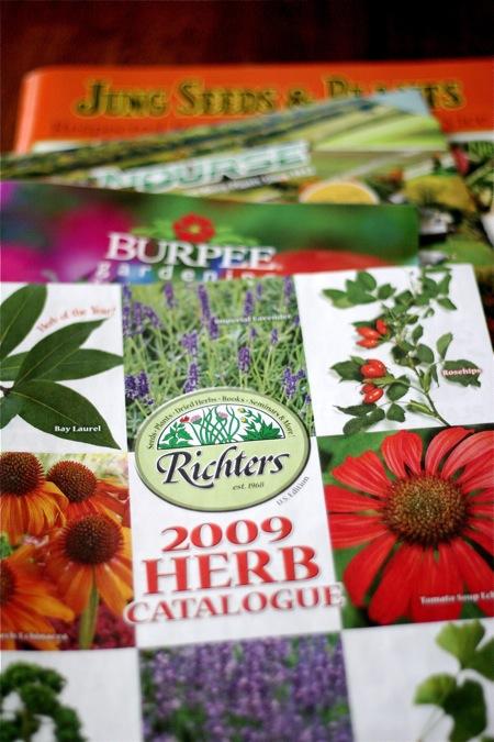 seed-catalogue