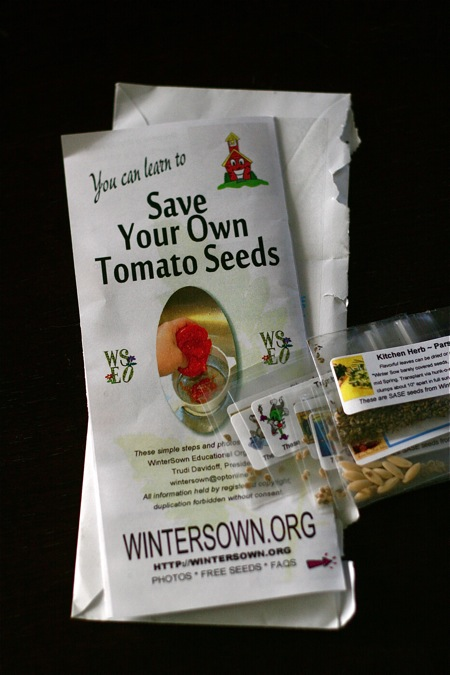 save-tomato-seeds-brochure