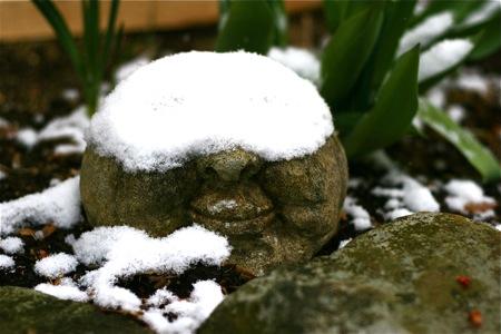 face-rock-under-snow