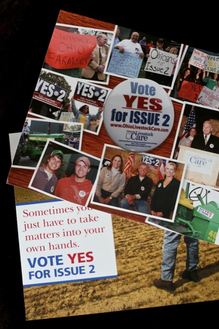 Vote_yes_on_issue_2_fliers