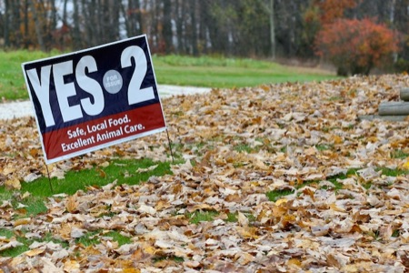 vote_yes_yard_sign