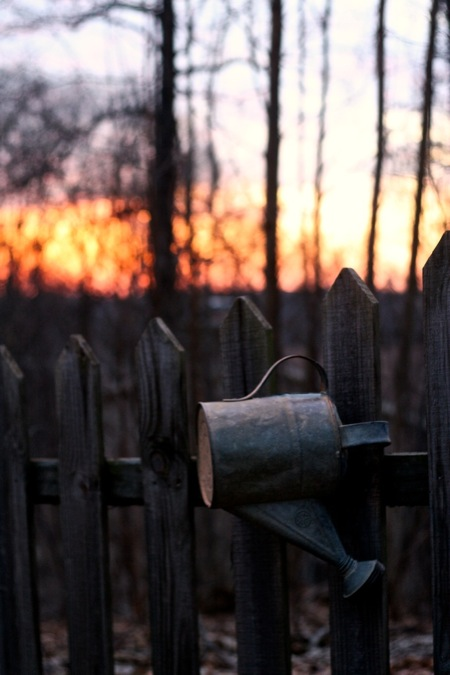 sunset_on_watering_can