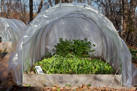 hoop_house_in_the_garden