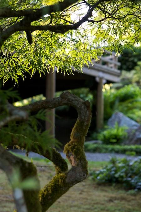 bloedel_reserve_japanese_garden