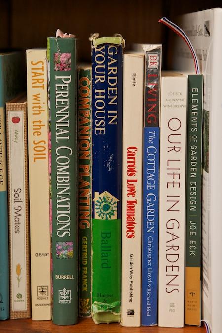 on My Bookshelf 11