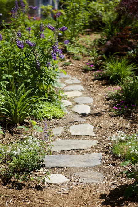 belfast garden tour 2 2