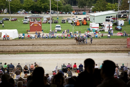 Wayne County Fair 3 (1)