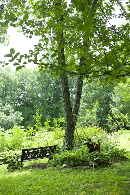 belfast garden tour 15