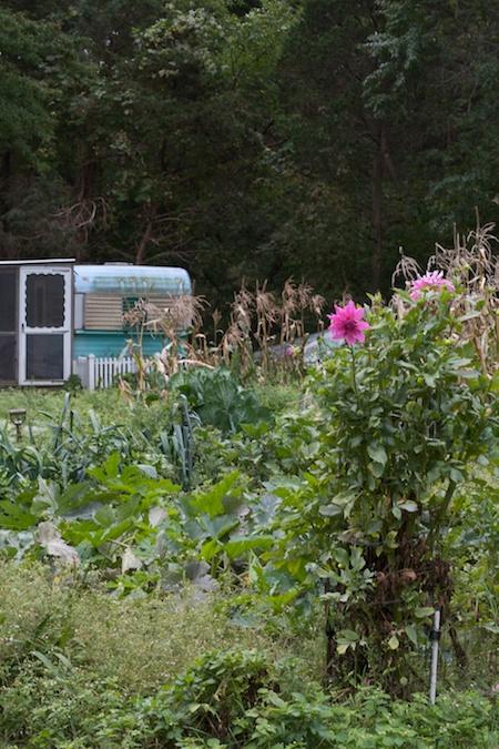 vintage camper garden shed