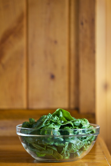 winter spinach 1